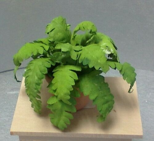 Dollhouse Miniature  Lacy Boston Fern in real red clay pot with tray 1:12 scale