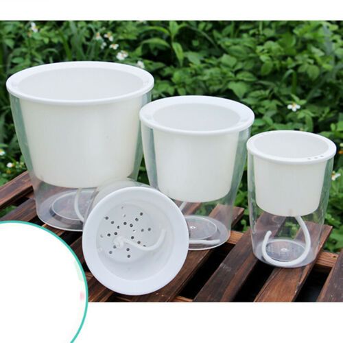 Square full transparent automatic water absorption lazy flower pot