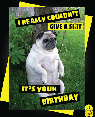 Funny Birthday Card Animals Banter Cheeky Humour Monkey related to me c343