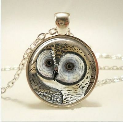 Vintage OWL Cabochon Tibetan silver Glass Chain Pendant Necklace New