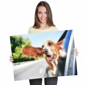 A1-Funny-Basset-Hound-Dog-Pets-Poster-60X90cm180gsm-Print-3703
