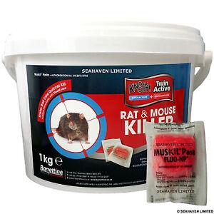 100 x 10 g rat souris killer pasta poison pour le. Black Bedroom Furniture Sets. Home Design Ideas