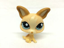 """Littlest Pet Shop #1656 Cream Chihuahua Puppy Dog LPS Blue Eyes Loose Figure 2"""""""