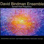 Sunset Park Polyphony by David Bindman Ensemble (CD, 2012, 2 Discs, David Bindman)