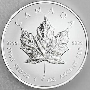 Canada 2014 5 Maple Leaf 1 Oz Pure Silver Numismatic