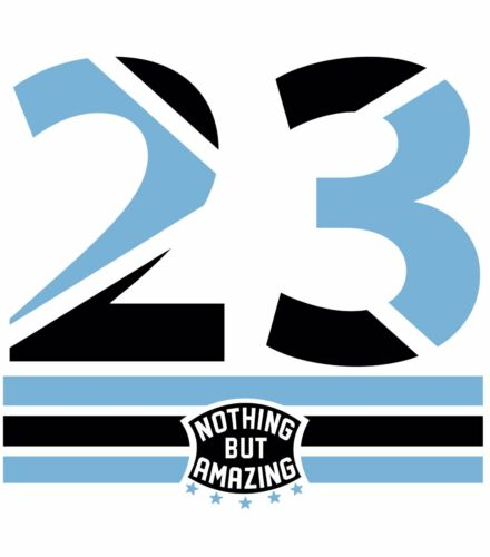 "/""THE 23/"" T-Shirt to Match Retro 9 Low /""PANTONE/"""