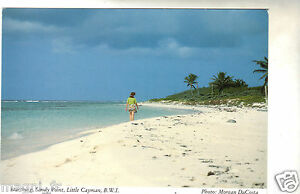 Cayman-Inseln-Cpsm-Searching-Sandy-Stelle-Little-Cayman