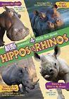 Hippos & Rhinos 0018713549983 DVD Region 1