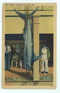 Image Is Loading Blue Marlin Fishing Beach Haven Nj Long