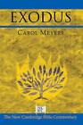 Exodus by Carol L. Meyers (Hardback, 2005)
