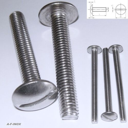 10 Cup Screw Plate Screw Stainless Steel VA Large Head Slot M3 M4 M5 M6