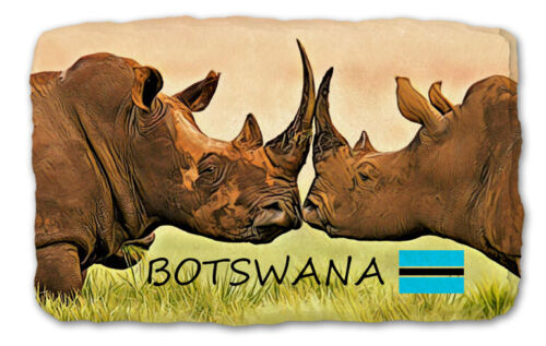 BOTSWANA AFRICA  Fridge Magnet Natural Stone 150 million years unique 283