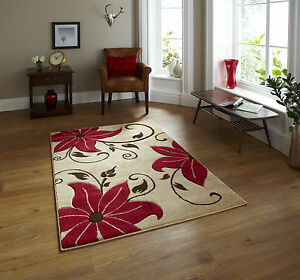 NEW-LARGE-MODERN-HAND-CARVED-DETAIL-BEIGE-RED-FLORAL-FLOWER-RUG-120x170cm