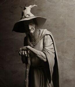 Antique-Witch-Photo-31-Oddleys-Strange-amp-Bizarre-5-x-7