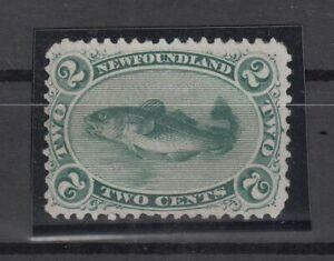 I3584-CANADA-NEWFOUNDLAND-SG-31-MINT-NO-GUM-CV-150