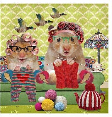 Knitting Circle Square Greeting Card Scream Animal Humour Photo Cards Blank