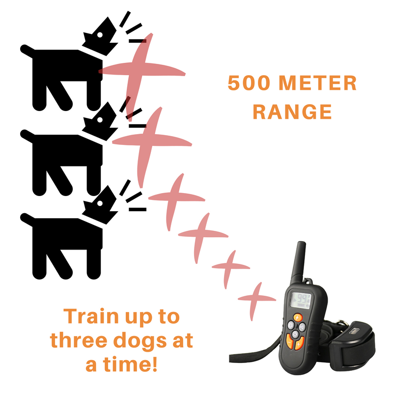 REMOTE TRAINING collar 3 3 3 DOGS 1 Remote 500metres Waterproof USB rechargeable ab3feb
