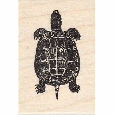 Top View Turtle Beeswax Rubber Stamp Mounted Reptiles Animals Wildlife Nature