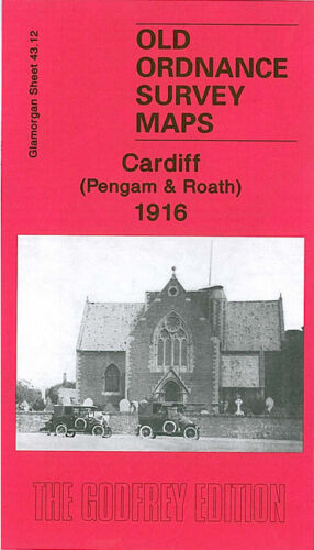 OLD ORDNANCE SURVEY MAP CARDIFF PENGAM ROATH 1916 WATERLOO GARDENS NORA STREET