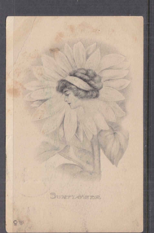 UNITED STATES, 1912 ppc. Sunflower Girl, 1c., Ripley, Ohio to Owensboro, Ky.