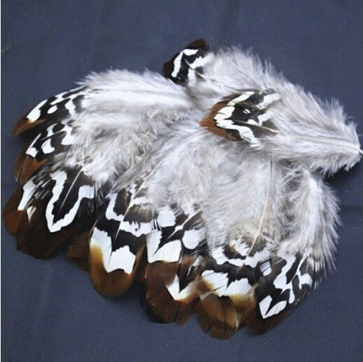 Free shipping 50pcs beautiful natural pheasant feathers 2-4 inches
