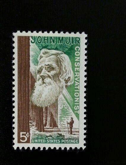 1964 5c John Muir, Conservationist Scott 1245 Mint F/VF