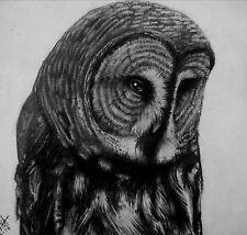 "Great Gray Owl ""Benevolence"" Strix nebulosa Original Drawing Print Decor Hallowe"