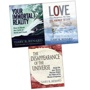 The Disappearance Of The Universe Book