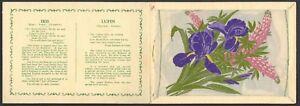 WIX-J-KENSITAS-FLOWERS-EXTRA-LARGE-PLAIN-IRIS-LUPIN