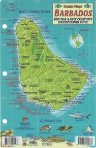 Details about Barbados Dive Map & Reef Creatures Guide Waterproof Fish Card  Franko Maps