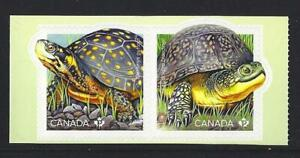 Canada-2019-Endangered-Tortugas-Autoadhesivo-Par-Nuevo-sin-Montar-MNH