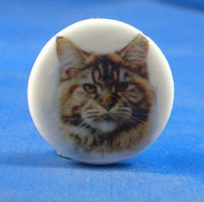 "1""  PORCELAIN CHINA  BUTTON -- MAINE COON CAT"