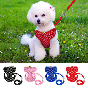 Mesh-Padded-Small-Dog-Harness-amp-Leads-Pet-Puppy-Cat-Vest-Yorkie-Jack-Russell-S-L