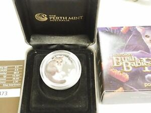 Australia-2013-Bush-Babies-II-2-Baby-Possum-50-Cents-1-2-Oz-Pure-Silver-Proof