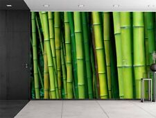 Green Bamboo Trees - Wall Mural Home Decor, Removable Sticker- 66x96 inches