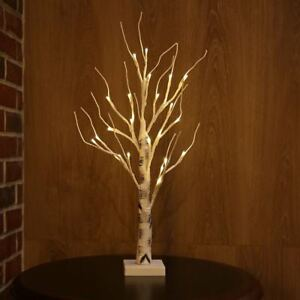 Image Is Loading White Stem Painted Branches Silver Birch Twig Tree