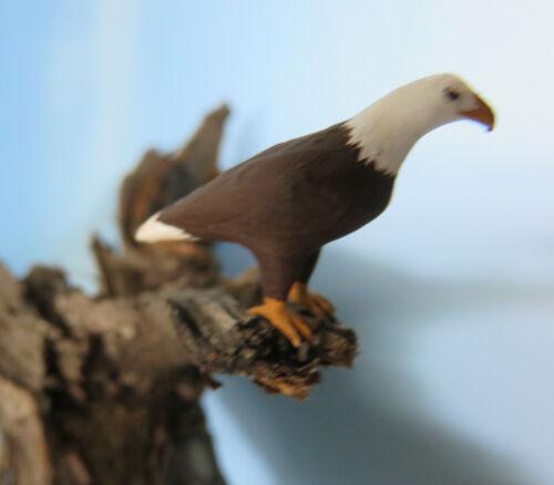 1:45 Weißkopfseeadler Figur Tier Spur 0