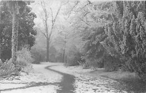 CPA-47-AGEN-SOUS-LA-NEIGE-CARTE-PHOTO-DECEMBRE-1931-UN-COIN-DU-JARDIN-PUBLIC-cl