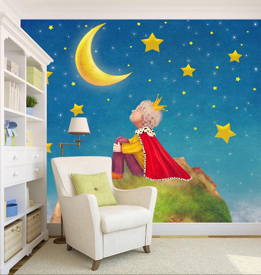 3D Boy Starry Sky 892 Cartoon Wall Paper Wall Wall Wall Print Decal Wall AJ WALLPAPER CA 9bbe71