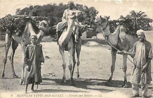 POSTCARD-EGYPT-Camels-and-Drivers-LL-9