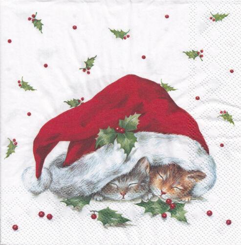 3 Lunch Servietten Weihnachten Zwei schlafende Kätzchen in der Nikolausmütze