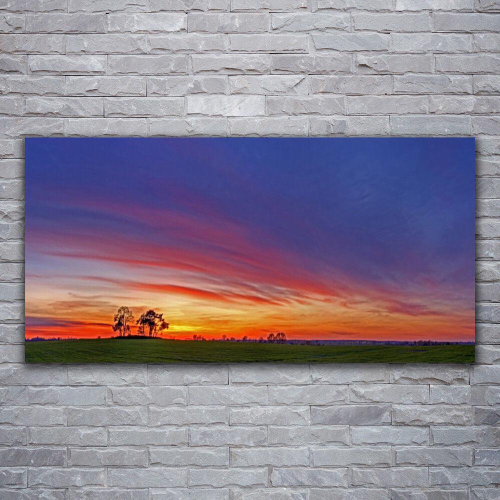 Fuxi double à à double acheter! Tableau sur Plexiglas® Image Impression 120x60 Nature Paysage Champ Arbres 0b1f1d