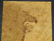 Myrtle Burl Raw Wood Veneer Sheet 7 X 15 Inches 150th 5003 50