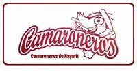 Camaroneros De Nayarit Photo License Plate