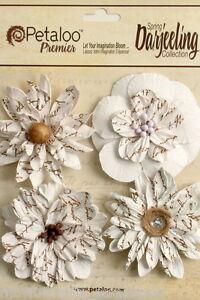 Printed-4-WHITE-Wild-Blossoms-Pack-DAISIES-55-60cm-Across-Darjeeling-Petaloo-I