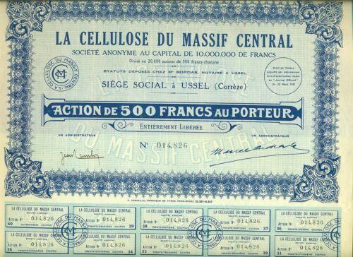 ACTION LA CELLULOSE DU MASSIF CENTRAL USSEL CORREZE