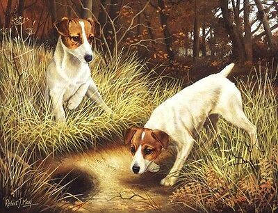 """Jack Russell Terrier /""""Rules/"""" Dog Art Print Matted"""