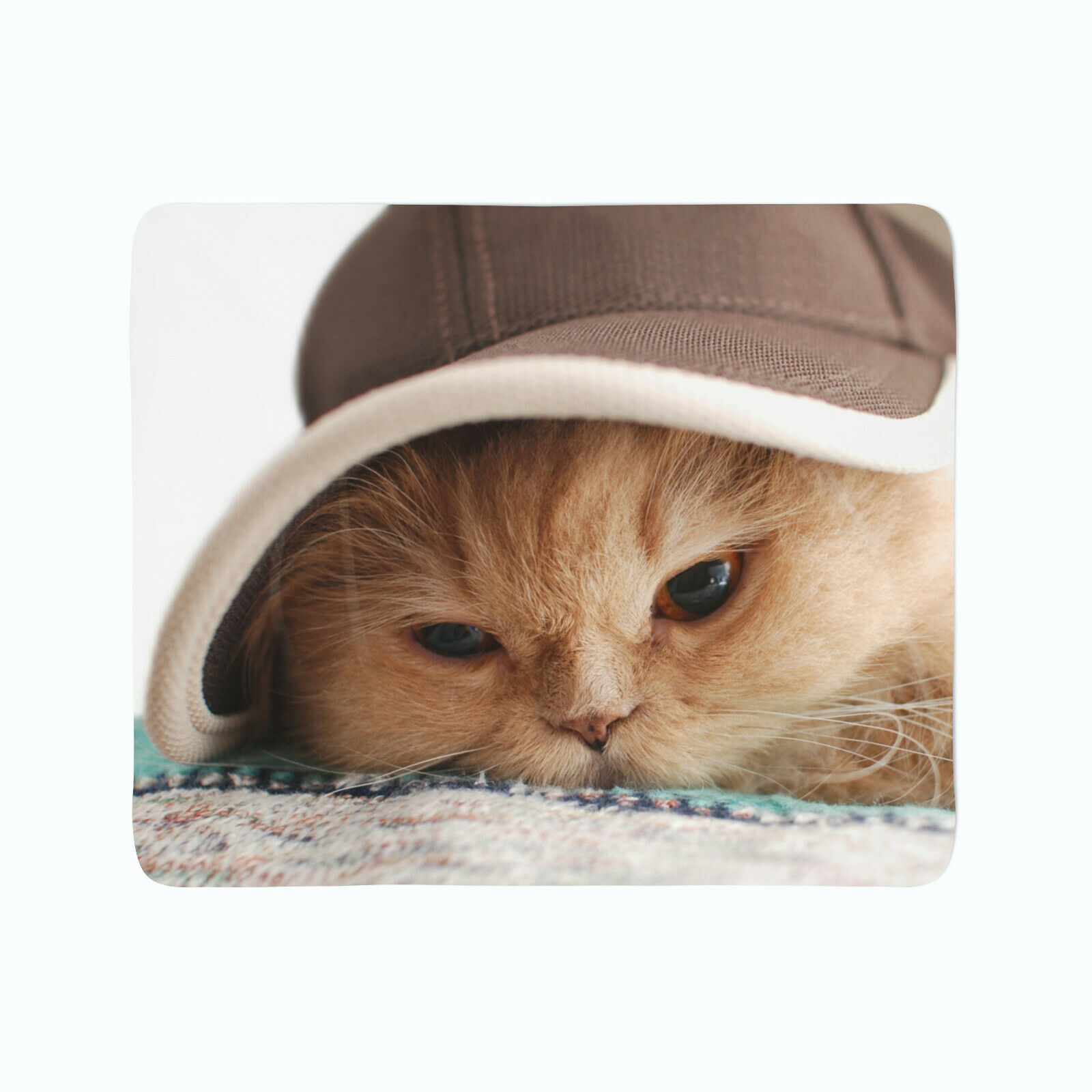FleeceDecke Foto Decke Kuscheldecke mit Motiv Katze mit Hut Tiere Cat in the Hat