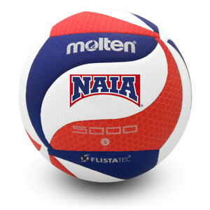 Image is loading Molten-V5M5000-3NAIA-Official-NAIA-Indoor-Volleyball-Pro- 2c6ff5fa6f91a