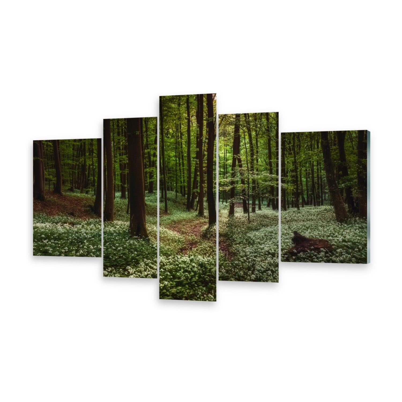 Mehrteilige Bilder Glasbilder Wandbild Frühlingswald